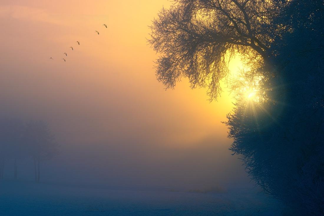 fog-3196953_1920