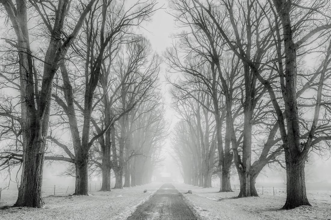 winter-1890653_1920