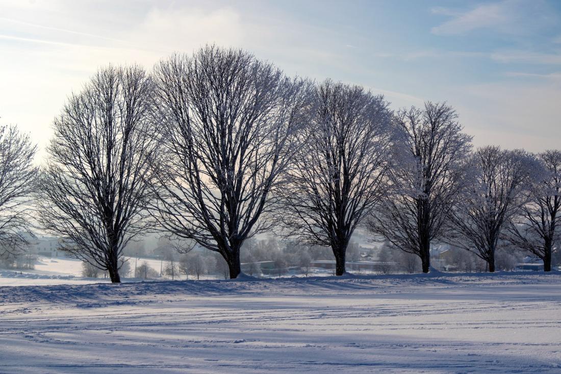 winter-3945851_1920