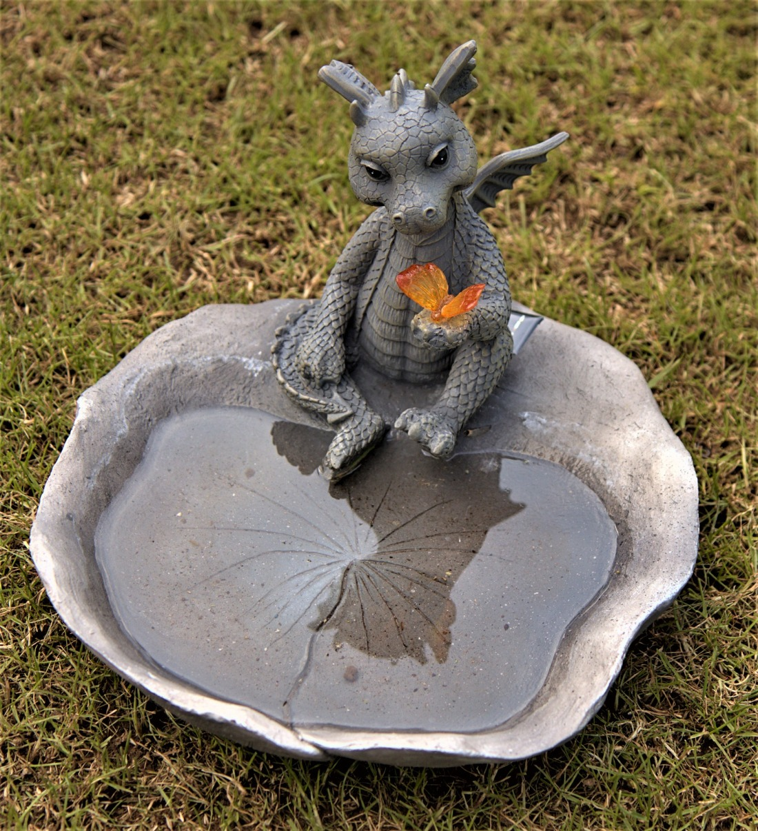 dragons-with-water-bowl-4212336_1920
