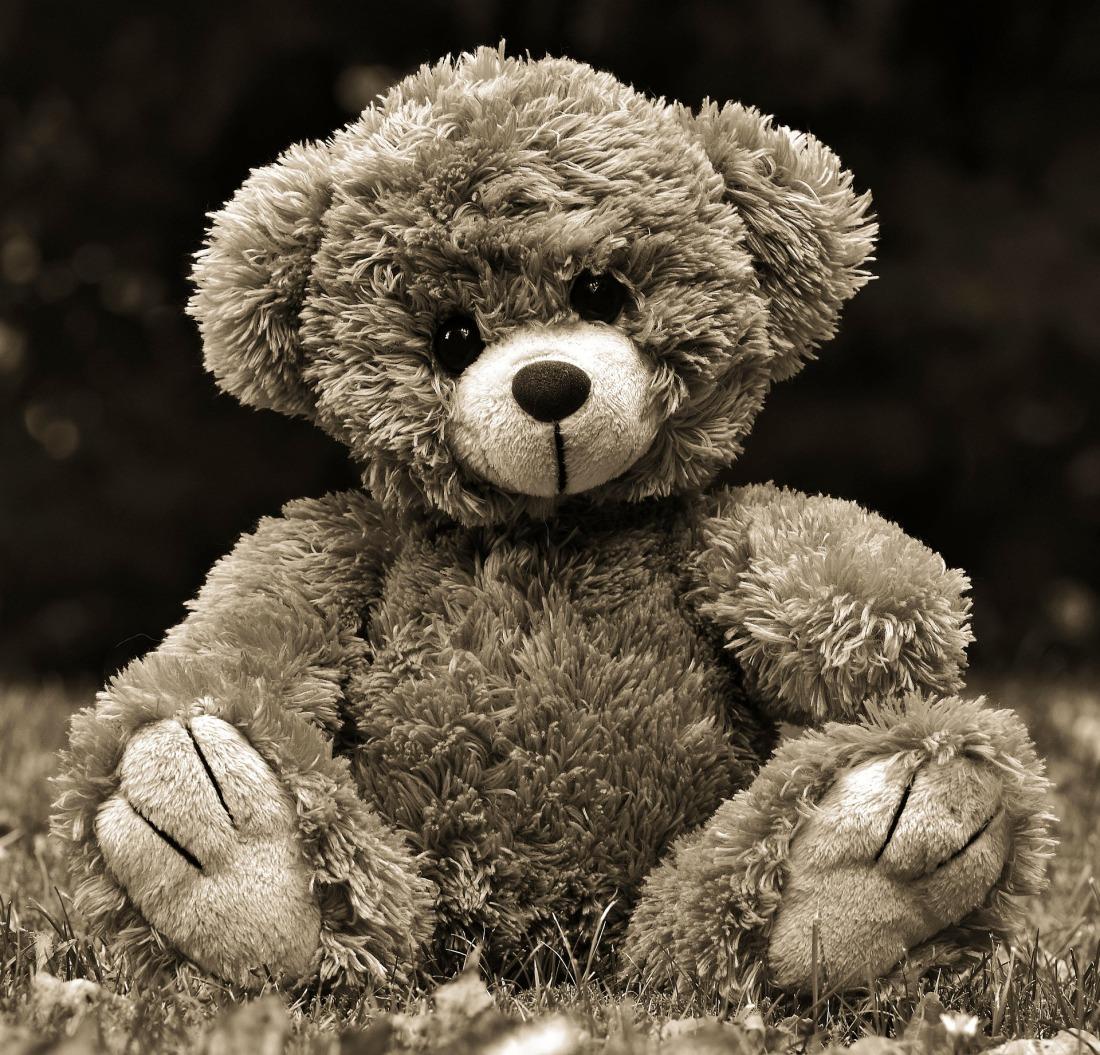 teddy-4294015_1920