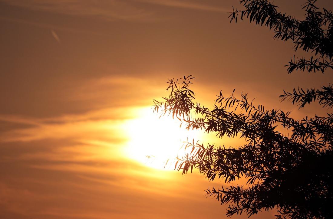 evening-sun-4363290_1920