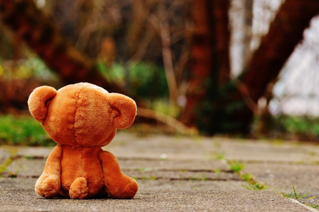 bear-1272799_1920