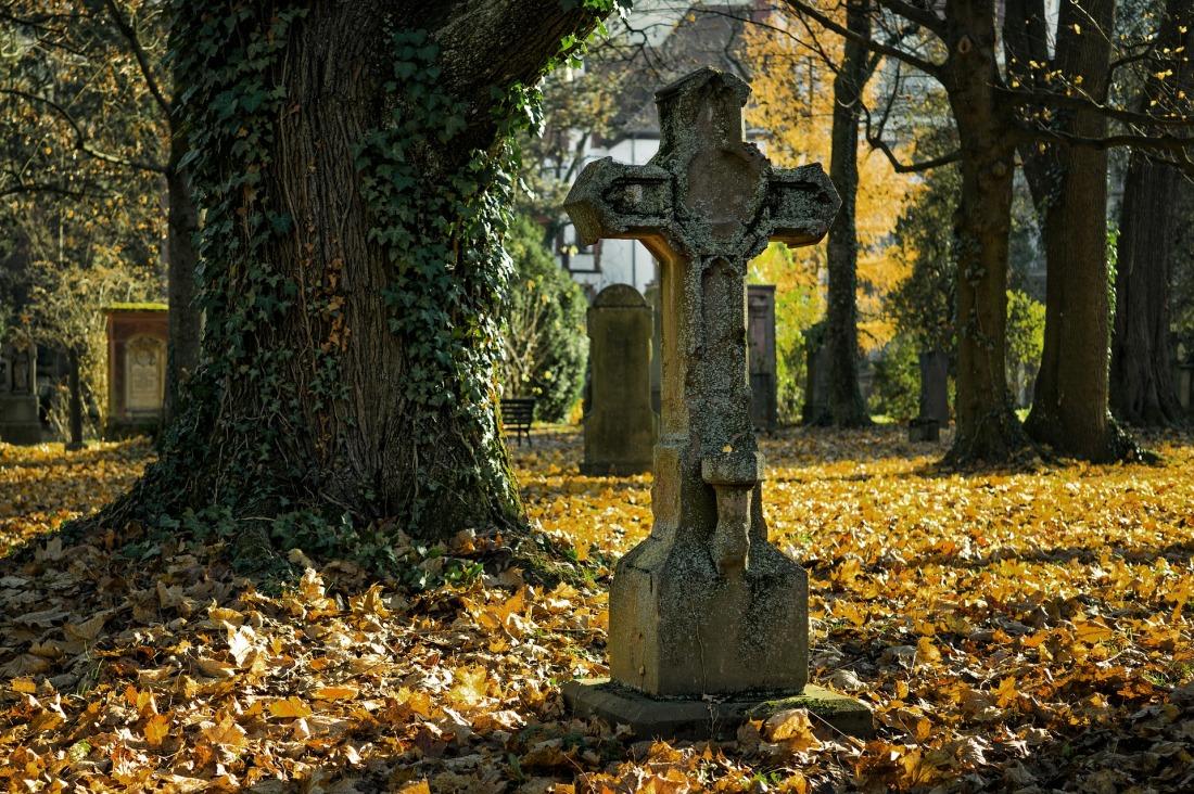 autumn-2182010_1920