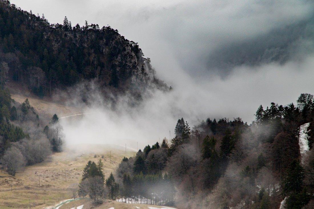fog-4597348_1920 (1)
