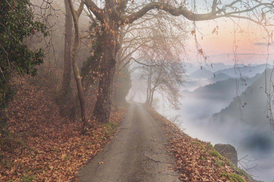 landscape-4694558_1920